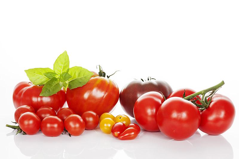tomaten englisch